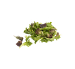 Van Gelder Indoor salad mix, zak 250 gr